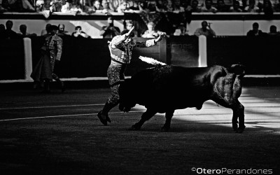 VISUALIZO-TOROS05